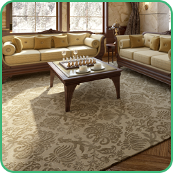 Livingroom Carpet and Rugs